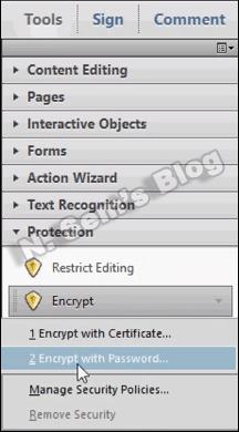 PDF Protection (step-3)